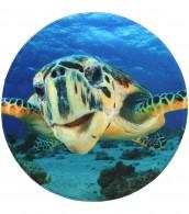 Badteppich rund Schildkröte Ø 80 cm